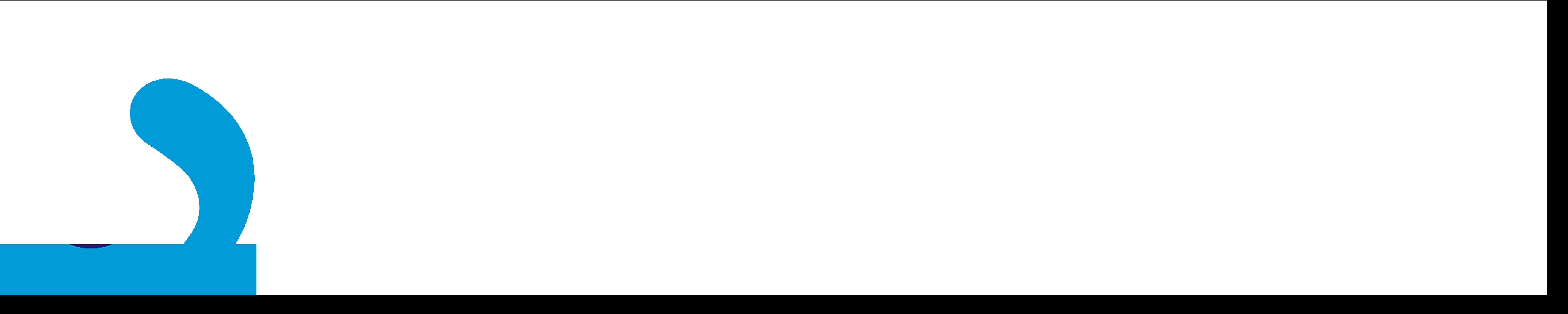 ComSource NO TAG Logo BIG WHITE